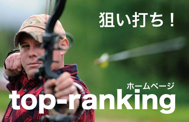 SEO_topranking20150730