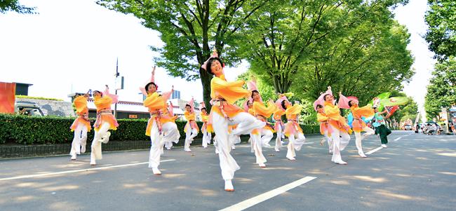 富山まつり YOSAKOI 黄色い衣装