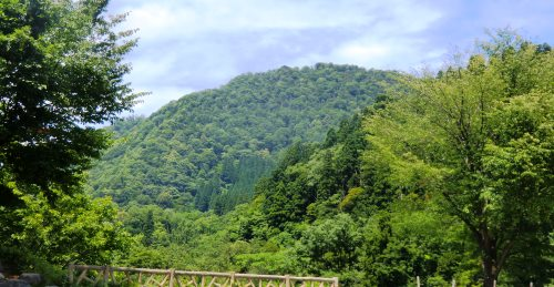富山の百山-来拝山3