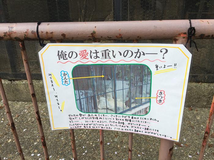 高岡古城公園動物園12
